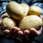 La Patata dell'Alto Viterbese
